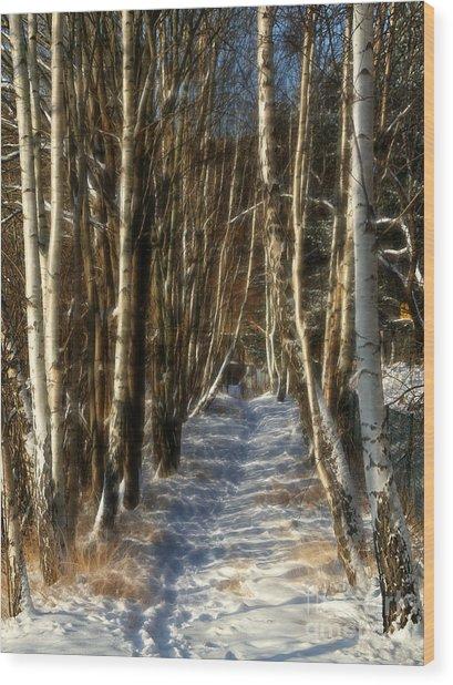 Winter Birches Wood Print by Lutz Baar
