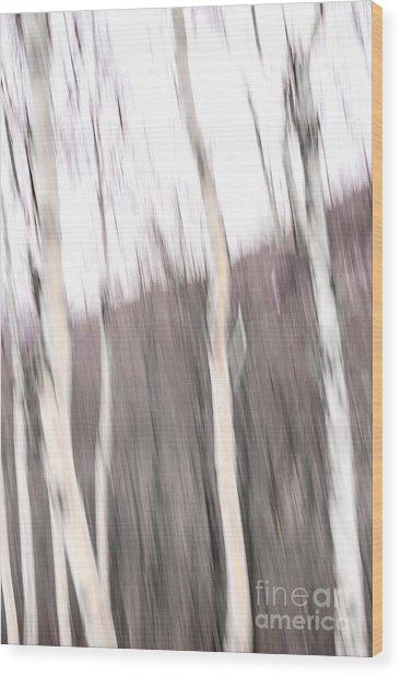 Winter Birches Tryptich 1 Wood Print