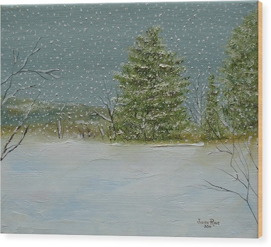 Winter Blanket Wood Print