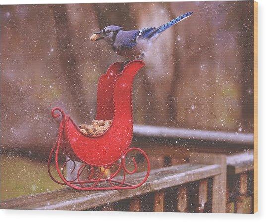 Winter Blue Jay #1 Wood Print