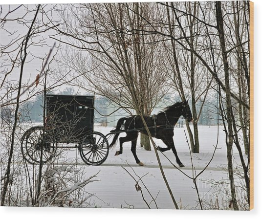 Winter Buggy Wood Print