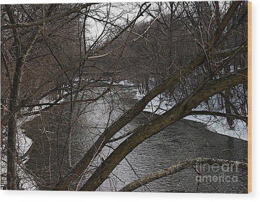 Winter Cedar Wood Print