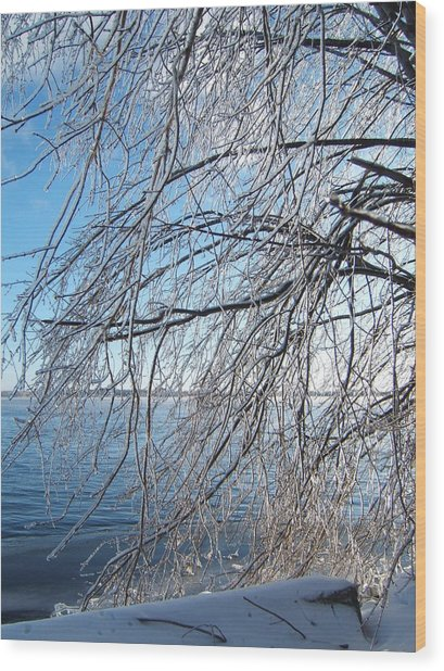 Winter Chill Wood Print by Margaret McDermott