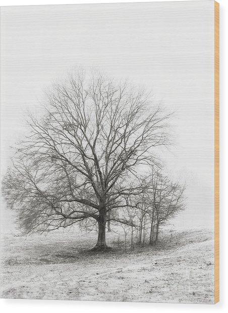 Winter Chrome Wood Print