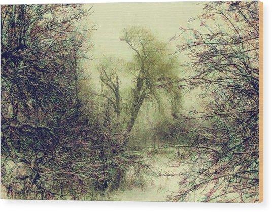 Winter Colours Wood Print