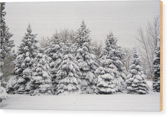 Winter Copse Wood Print
