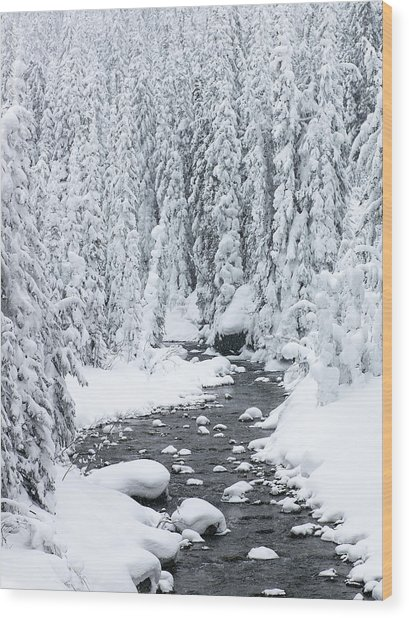 Winter Creek Wood Print