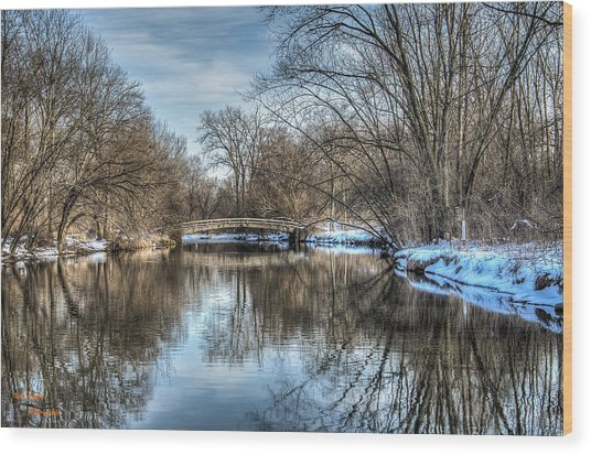 Winter Creek Wood Print by Dan Crosby