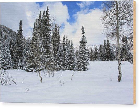 Winter Wood Print by Darryl Wilkinson