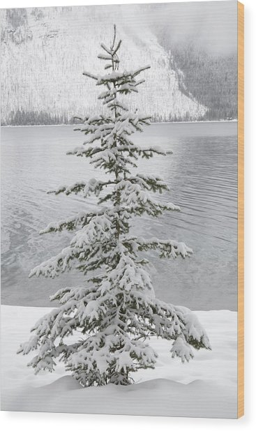 Winter Decor Wood Print