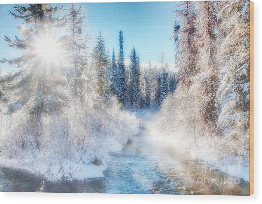 Wood Print featuring the photograph Winter Delight On Lolo Creek by Katie LaSalle-Lowery