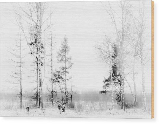 Winter Drawing Wood Print