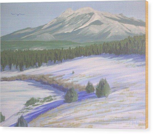 Winter Eagle At Mormon Lake Wood Print