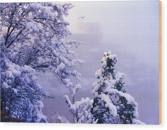 Winter Flight Of Raven Wood Print