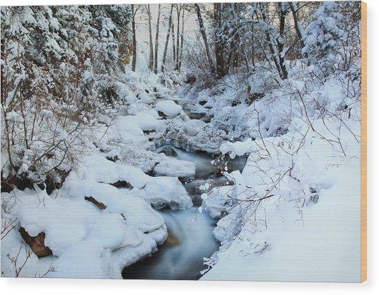 Winter Flow Wood Print by Darryl Wilkinson