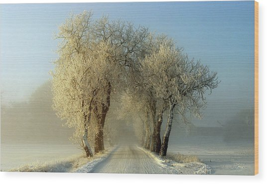 Winter  Gateway Wood Print