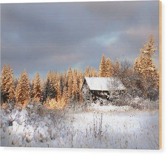 Winter Glow Wood Print by Doug Fredericks