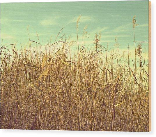 Winter Grass Wood Print