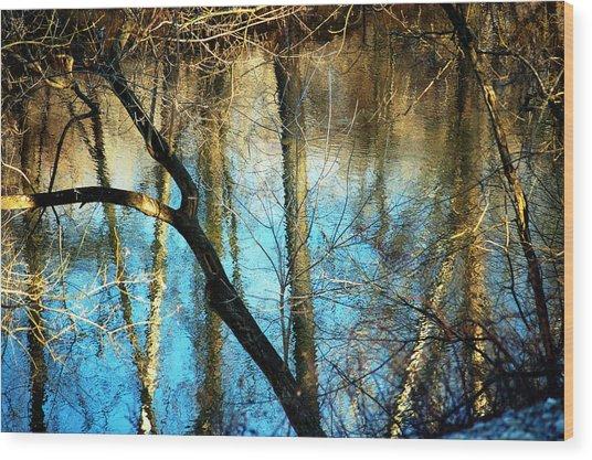Winter Hike Wood Print