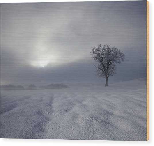 Winter Impression Wood Print