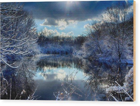 Winter In April 2014 Wood Print