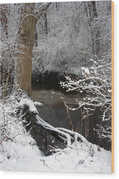 Winter In Rotary Park 2 Wood Print