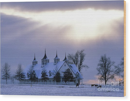 Winter In The Bluegrass - Fs000286 Wood Print