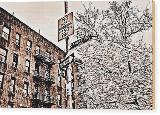 Winter In The Bronx Wood Print