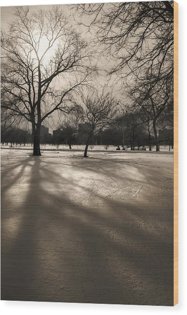 Winter In The Park Wood Print