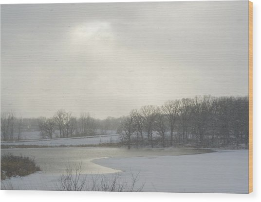 Winter Lake And Forest Wood Print
