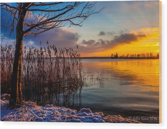 Winter Lake Sunset With A Tree Lighted In Red And Orange  Wood Print
