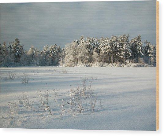 Winter Landscape At Mud Lake Ottawa Wood Print