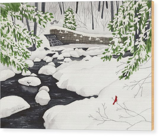 Winter Landscape - Mill Creek Park Wood Print