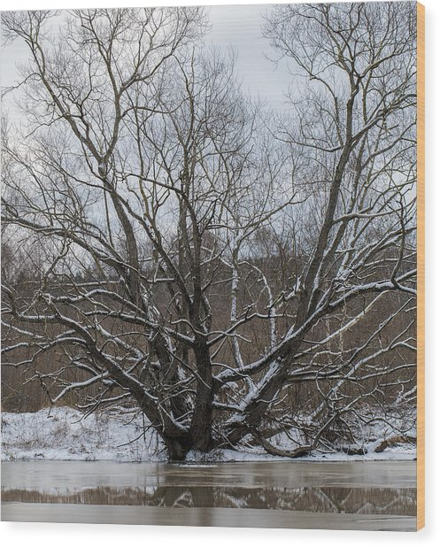Wood Print featuring the photograph Winter  Leif Sohlman by Leif Sohlman