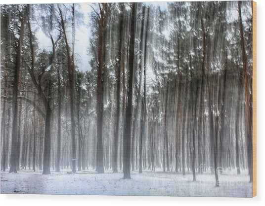 Winter Light In A Forest With Dancing Trees Wood Print