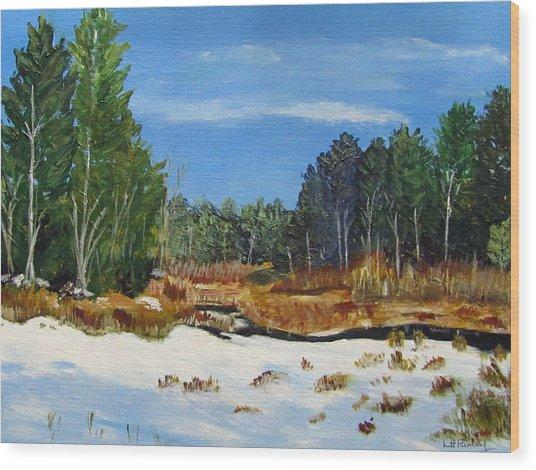 Winter Marsh In Hooksett Wood Print
