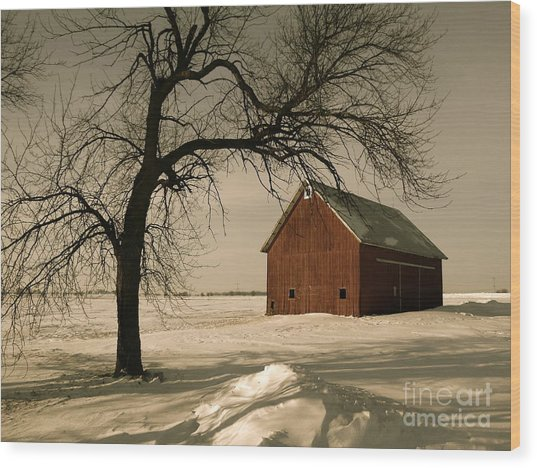 Winter Memory Wood Print