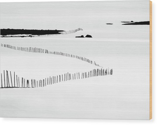 Winter Mode II Wood Print