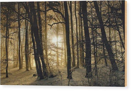 Winter Morning Wood Print by Norbert Maier