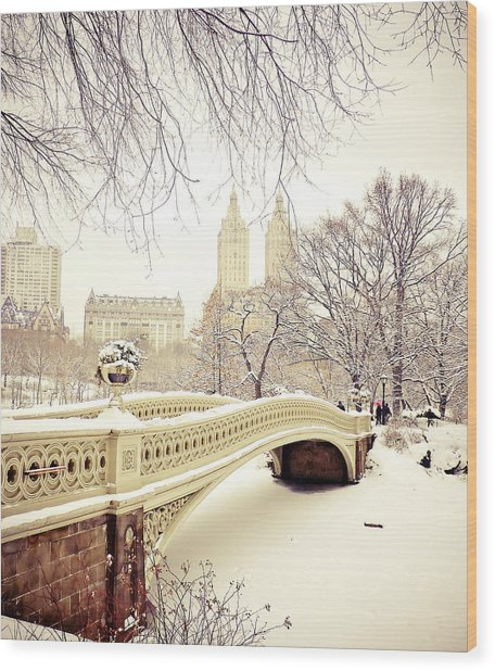 Winter - New York City - Central Park Wood Print