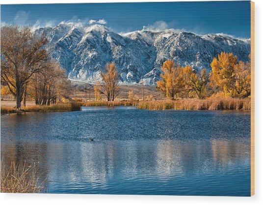 Winter Or Fall Wood Print