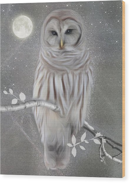 Winter Owl Wood Print