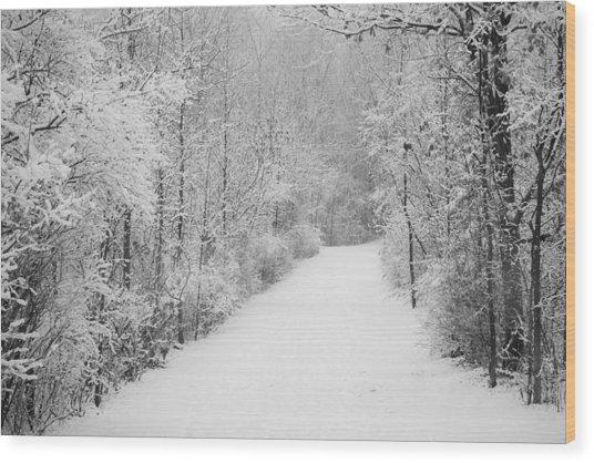Winter Pathway Wood Print