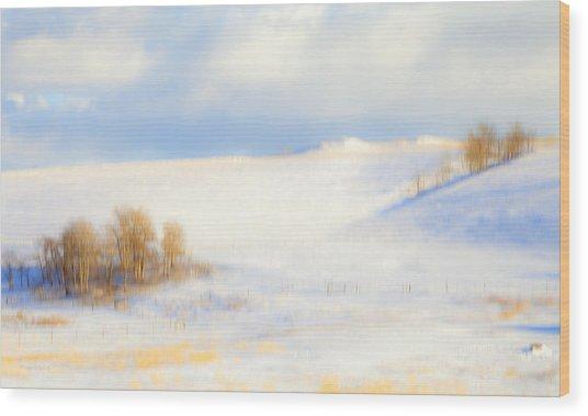 Winter Poplars Wood Print