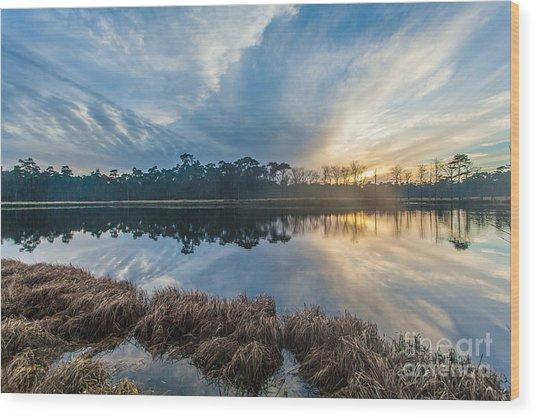 Winter Reflection-1 Wood Print
