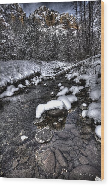 Winter Scene Wood Print by Bill Cantey