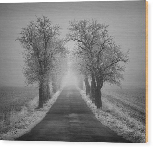 Winter Scene Wood Print by Jaromir Hron