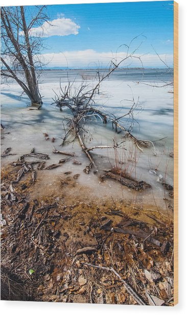 Winter Shore At Barr Lake_2 Wood Print