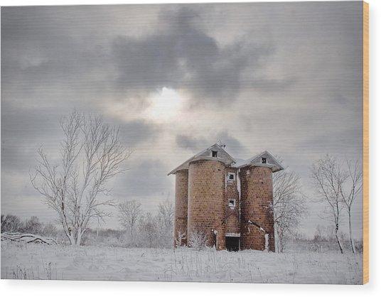 Winter Silo Wood Print by Karen Varnas