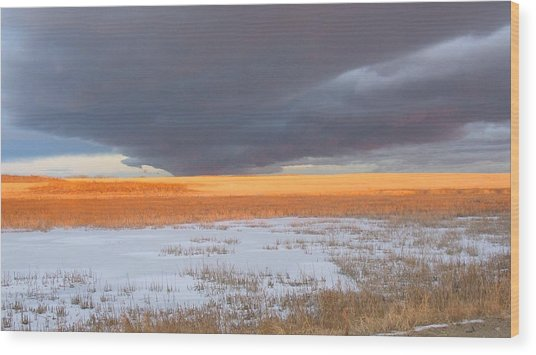 Winter Sky Alberta  Wood Print by Susan Copley